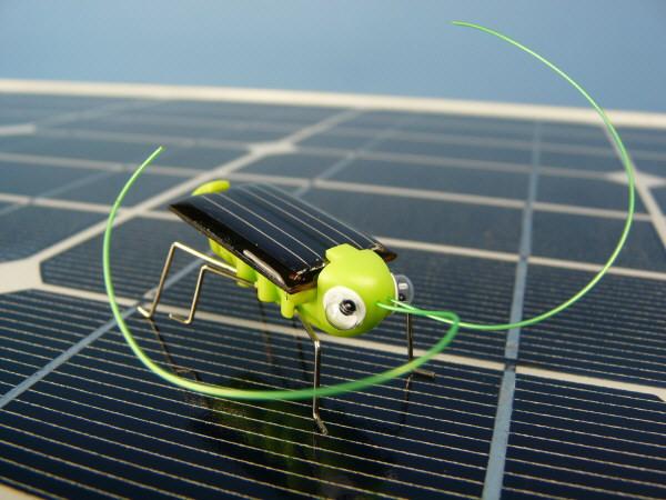 Solar Grasshooper